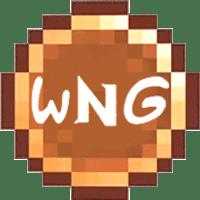 WNG Coins
