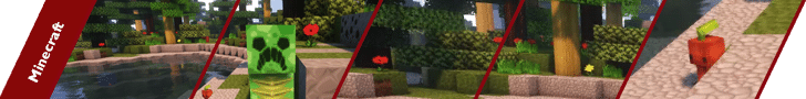 Minecraft - Shop Banner